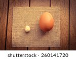 large and small eggs  ... | Shutterstock . vector #260141720
