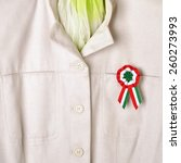 Small photo of Hungary National Day is March 15.th.The cockade symbol of the holiday, stylist women's clothing.