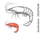 shrimp isolated on white  photo ... | Shutterstock .eps vector #260294168
