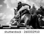 equestrian | Shutterstock . vector #260332910