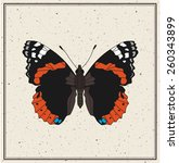 Butterfly Admiral   Vector...