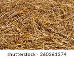 Close Up Of Straw Background...