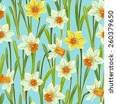Yellow White Jonquil Daffodil...