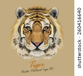 Tiger Animal Face. Vector Cute...