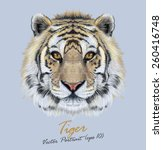 Vector Portrait Of A Tiger On...