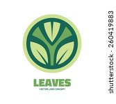 leaves   vector logo template... | Shutterstock .eps vector #260419883