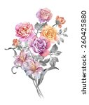 watercolor illustration bouquet ... | Shutterstock . vector #260425880