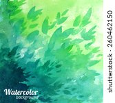 green vector watercolor... | Shutterstock .eps vector #260462150