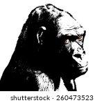 Illustration Of Gorilla  Black...
