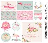 Flamingo Party Set. For Weddin...