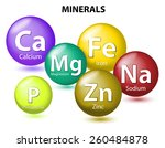 essential chemical minerals or... | Shutterstock .eps vector #260484878