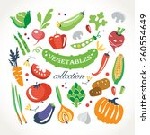 vegetables collection | Shutterstock .eps vector #260554649