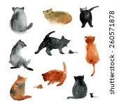 9 cute watercolor cats with... | Shutterstock .eps vector #260571878