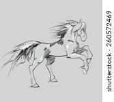 horse reared vector | Shutterstock .eps vector #260572469