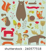 forest animals in vector set.... | Shutterstock .eps vector #260577518