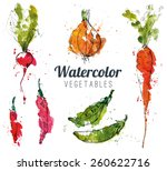 set of watercolor vegetables | Shutterstock .eps vector #260622716