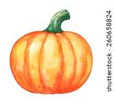 Watercolor Vegetable Pumpkin...