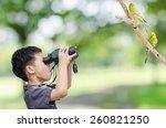 young asian boy looking birds...   Shutterstock . vector #260821250