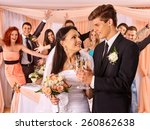 happy wedding couple and guests ... | Shutterstock . vector #260862638