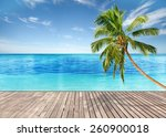 tropical beach with empty... | Shutterstock . vector #260900018