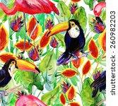 exotic bird toucan and flamingo ...   Shutterstock . vector #260982203