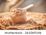 whey protein scoop. sports... | Shutterstock . vector #261069146
