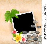 illustration exotic natural...   Shutterstock .eps vector #261077048