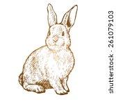 Stock vector rabbit ink sketch vector illustration 261079103