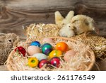 young fledglings with easter... | Shutterstock . vector #261176549
