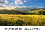 mountain summer landscape. meadow meadow with tall yellow grass and forests on hillside in morning light - stock photo