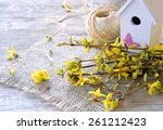 Spring Flowers And Birdhouse
