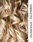 curly hair. hairdressing. wave .... | Shutterstock . vector #261240800