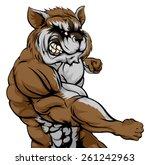 a mean looking raccoon sports... | Shutterstock .eps vector #261242963