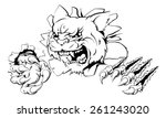 a wildcat or cougar sports...   Shutterstock .eps vector #261243020