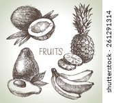 hand drawn sketch fruit set.... | Shutterstock .eps vector #261291314