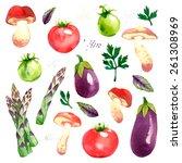 watercolor vector vegetables... | Shutterstock .eps vector #261308969