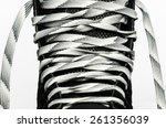 front of skate | Shutterstock . vector #261356039