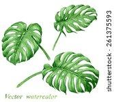 set of watercolor tropical... | Shutterstock .eps vector #261375593