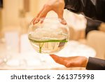 glassware. hands holding bowl... | Shutterstock . vector #261375998