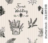 hand drawn graphic vintage...   Shutterstock .eps vector #261389348
