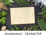 various herbs arranged as a... | Shutterstock . vector #261466769