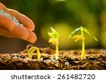 plant seed growing concept ... | Shutterstock . vector #261482720