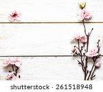 artificial apple blossom on... | Shutterstock . vector #261518948
