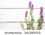 lavender on wood background | Shutterstock . vector #261585410