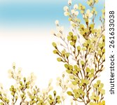floral background willow... | Shutterstock . vector #261633038