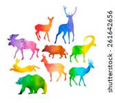 vector collection of wild game... | Shutterstock .eps vector #261642656