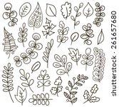 Set Of Leaves. Herbarium Set....