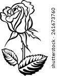 rose with leaves. vector tattoo ... | Shutterstock .eps vector #261673760