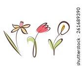 outlined hand drawn flower... | Shutterstock .eps vector #261689390