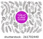 vector floral set. graphic... | Shutterstock .eps vector #261702440